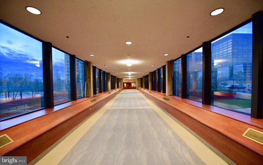 Breezeways - 5505 SEMINARY RD #613N, FALLS CHURCH