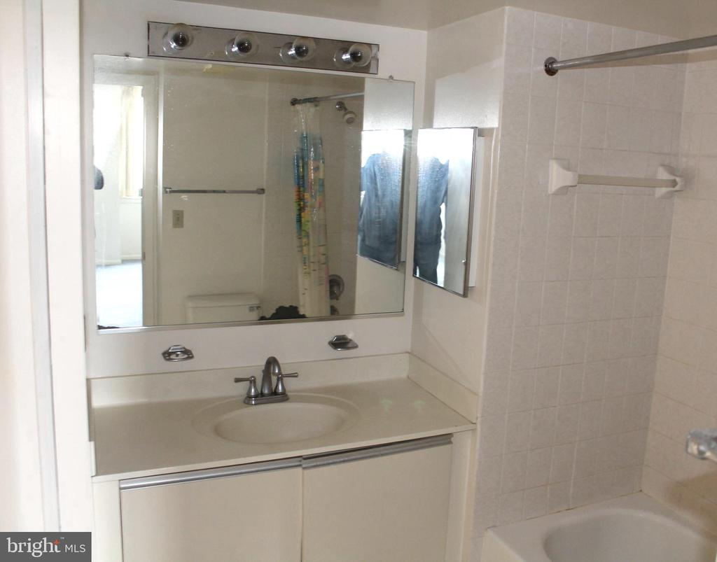 Master Bath - 5505 SEMINARY RD #613N, FALLS CHURCH