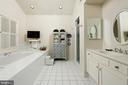 Spacious master bath steps from the walk-in closet - 317 S SAINT ASAPH ST, ALEXANDRIA