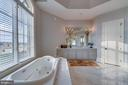 Soaking Tub with Jets - 22662 CREIGHTON FARMS DR, LEESBURG