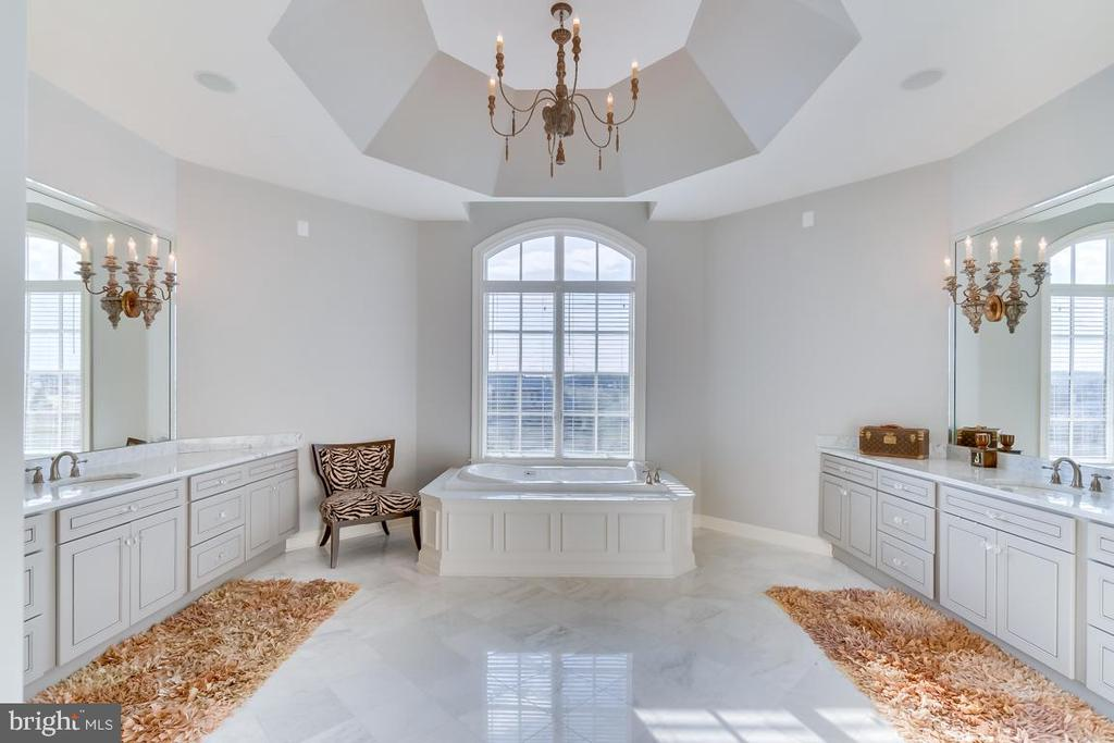Beautiful Tray Ceiling in Master Bath - 22662 CREIGHTON FARMS DR, LEESBURG