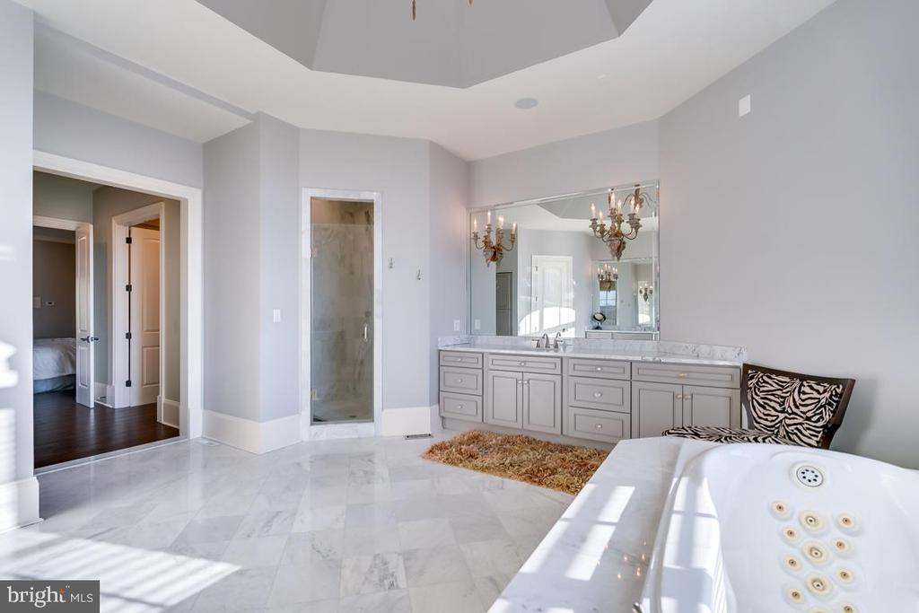 Luxurious Master Bath - 22662 CREIGHTON FARMS DR, LEESBURG