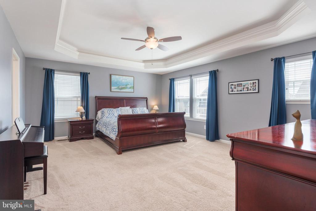Dramatic master bedroom - 181 MILL RACE RD, STAFFORD