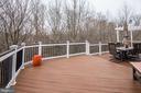 Rear Trex Deck - 43230 PARKERS RIDGE DR, LEESBURG