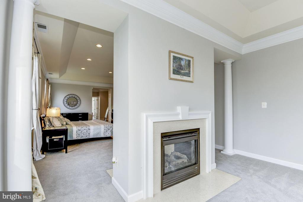 Two-Sided Gas Fireplace - 43230 PARKERS RIDGE DR, LEESBURG