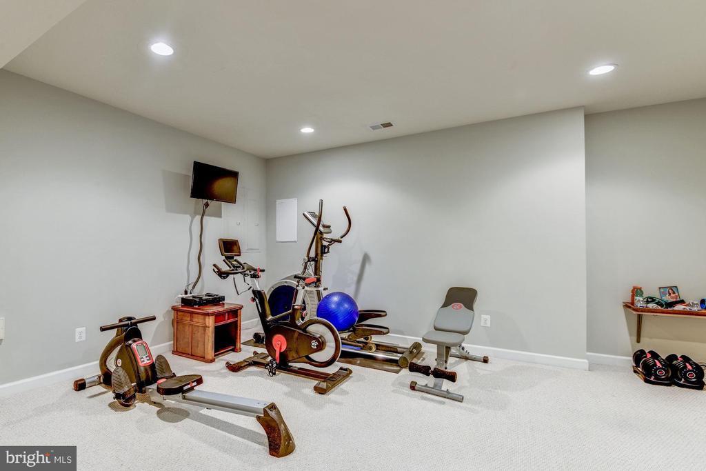 Bonus Room - Gym - 43230 PARKERS RIDGE DR, LEESBURG