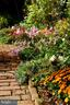 An array of colorful flowers in the garden - 317 S SAINT ASAPH ST, ALEXANDRIA