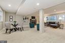Lower Level Recreation Room - 9215 SAINT MARKS PL, FAIRFAX
