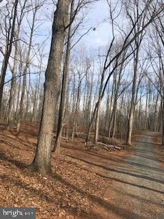 Land for Sale at 6645 Beach Road Warrenton, Virginia 20187 United States
