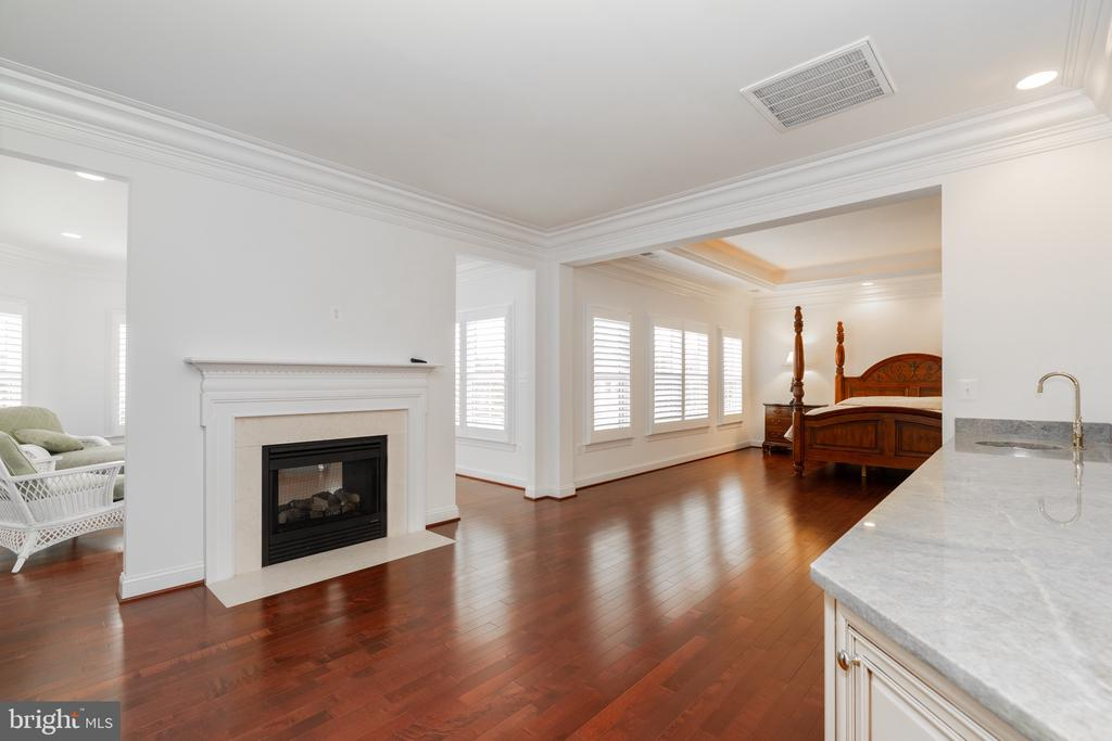 Master bed with sitting room and 2-sided fireplace - 9637 MAYMONT DR, VIENNA