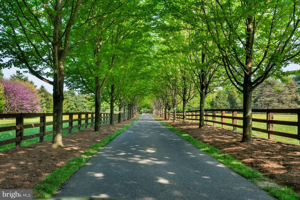 Silver Maples - 948 MELVIN RD, ANNAPOLIS