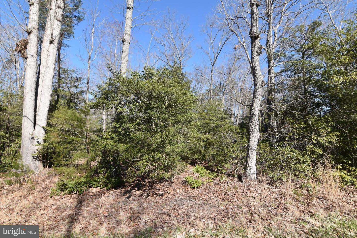 Additional photo for property listing at  Drayden, Maryland 20630 United States