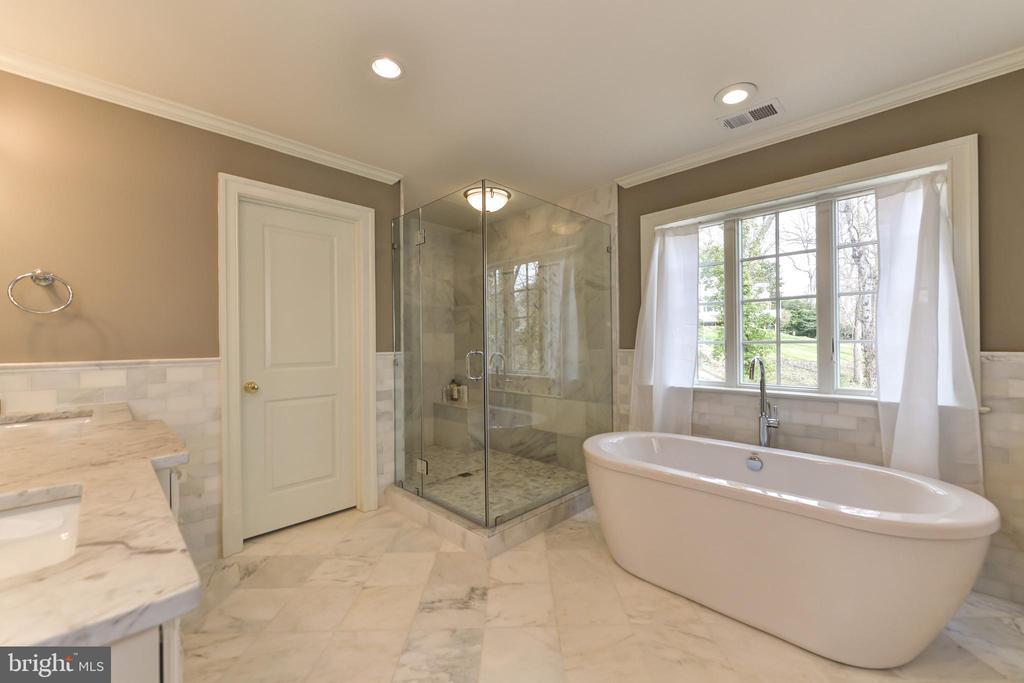 Separate shower w/ intricate marble details - 402 PRINCETON BLVD, ALEXANDRIA