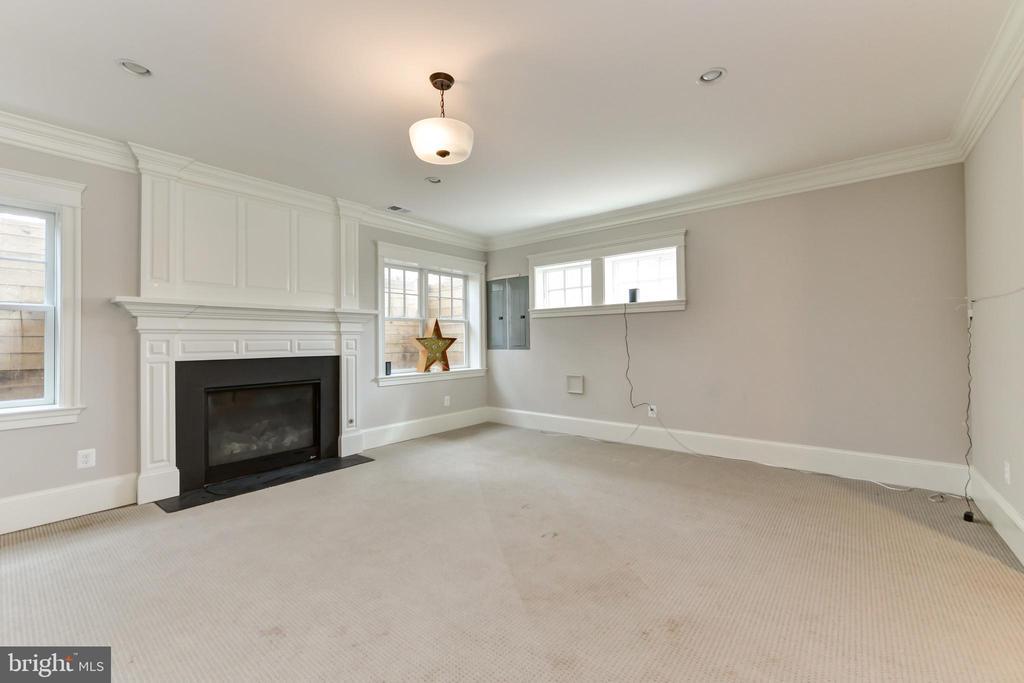 Lower level Rec room has gas fireplace - 402 PRINCETON BLVD, ALEXANDRIA