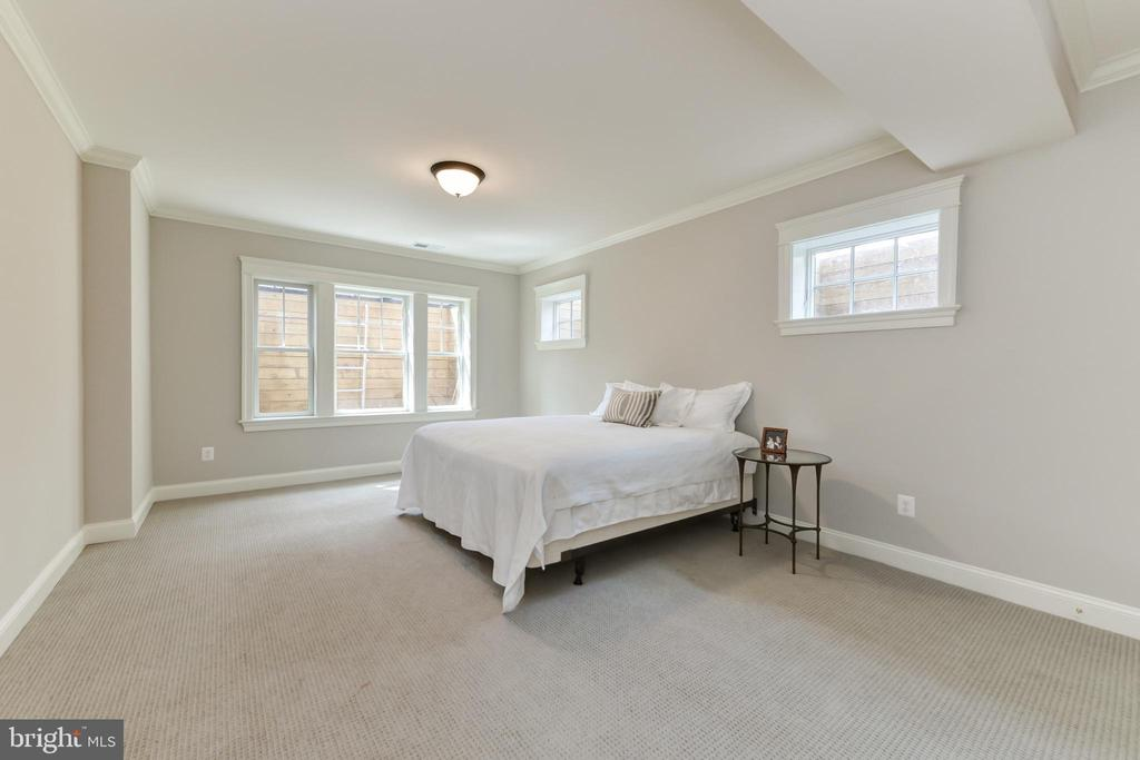 Lower level Bedroom - 402 PRINCETON BLVD, ALEXANDRIA