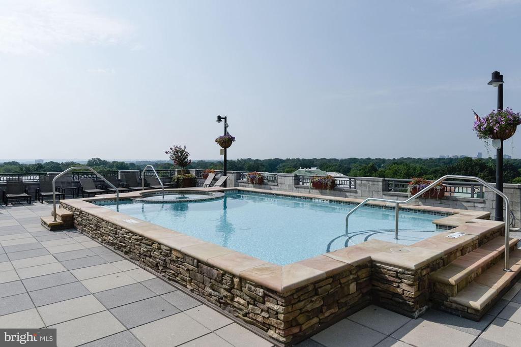 Rooftop Pool and Hot Tub - 1021 N GARFIELD ST #221, ARLINGTON