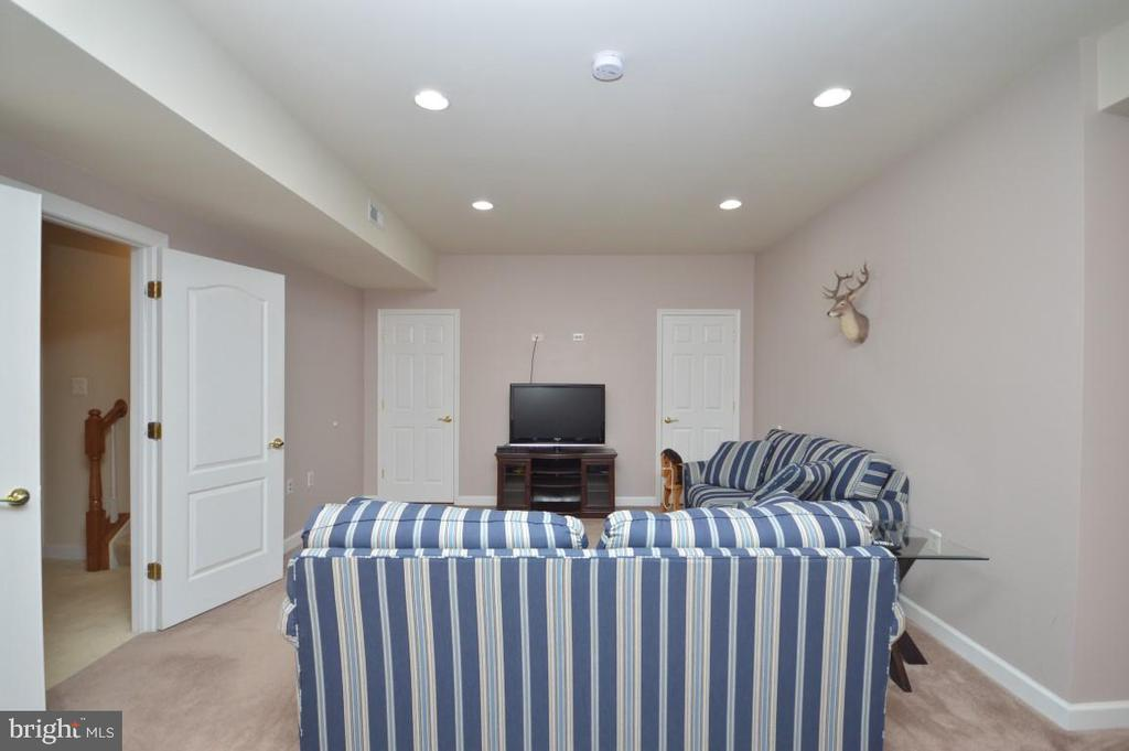 Game Room - 11829 CLARKS MOUNTAIN RD, BRISTOW