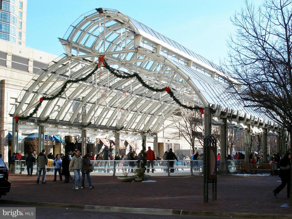 RTC Ice Rink - 11990 MARKET ST #1101, RESTON