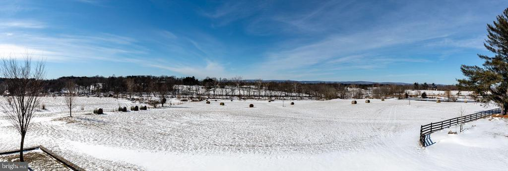 Manicured pastures with equestrian trails - 40041 HEDGELAND LN, WATERFORD
