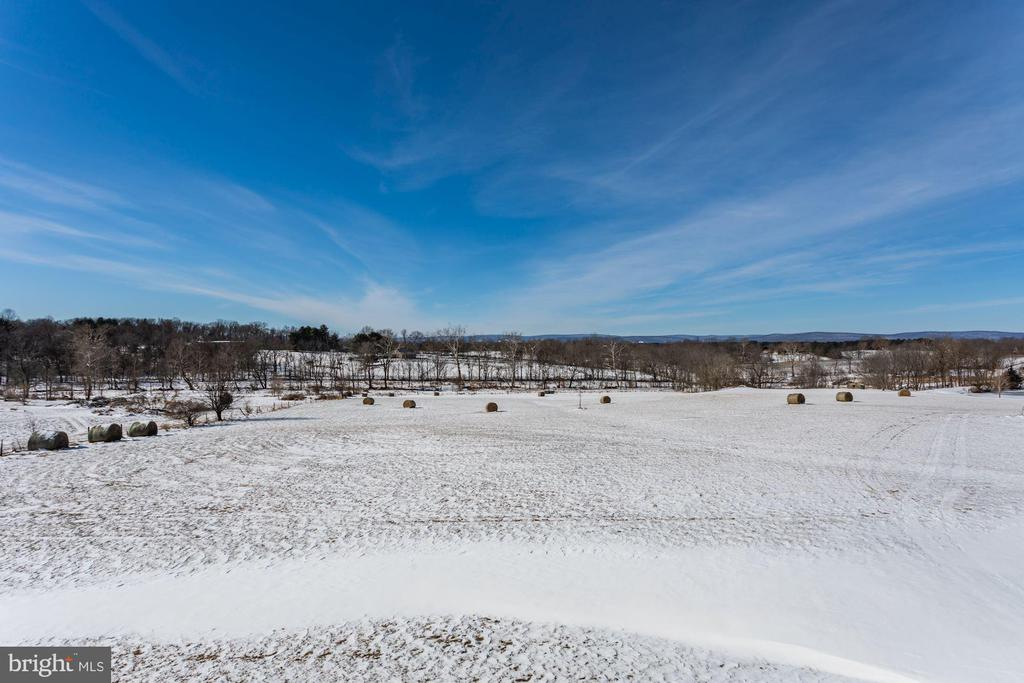 Spring and Summer you see no one but the views - 40041 HEDGELAND LN, WATERFORD