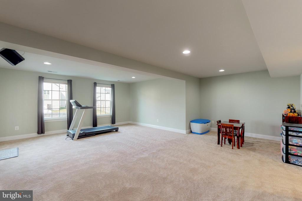 Basement has tons of room for activities! - 25875 SYCAMORE GROVE PL, ALDIE