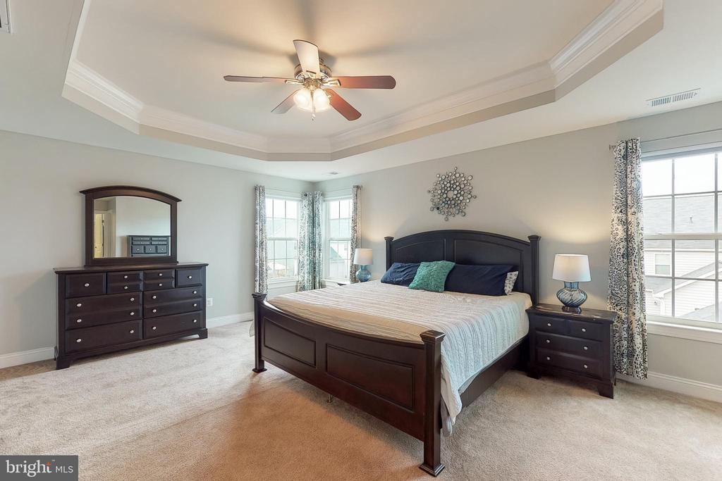 Master bedroom with trey ceiling - 25875 SYCAMORE GROVE PL, ALDIE