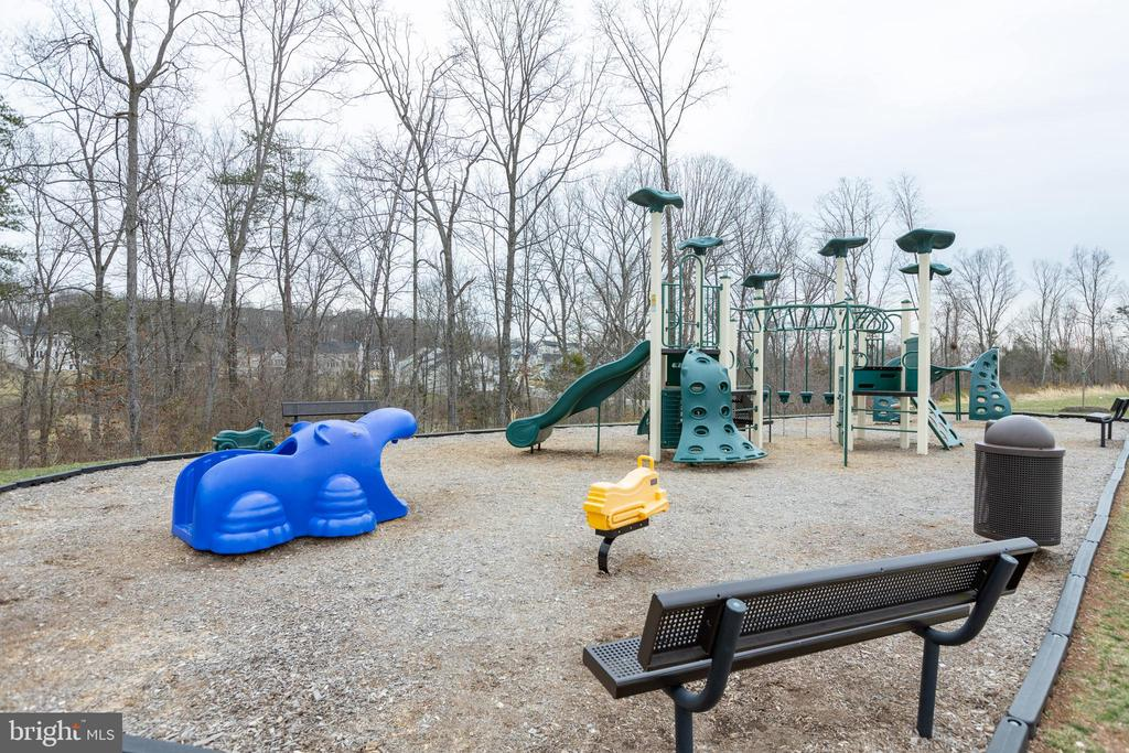 So many tot lots and playgrounds to choose from - 25875 SYCAMORE GROVE PL, ALDIE