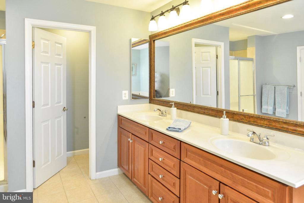 Master Bath - 42547 GOOD HOPE LN, BRAMBLETON