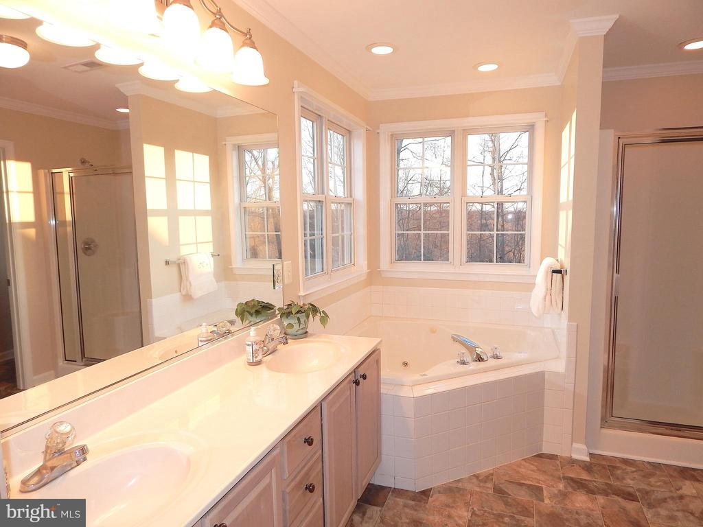 Owner's suite luxury bath - 81 BRUSH EVERARD CT, STAFFORD