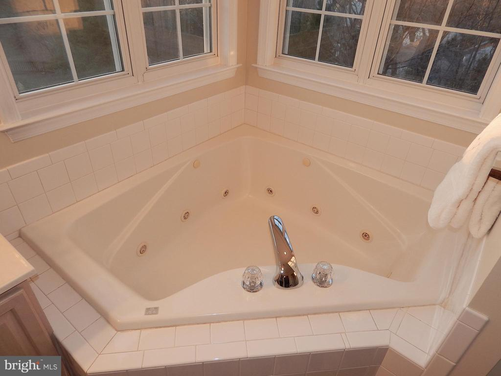 RELAX! Corner, jetted soaking tub - 81 BRUSH EVERARD CT, STAFFORD