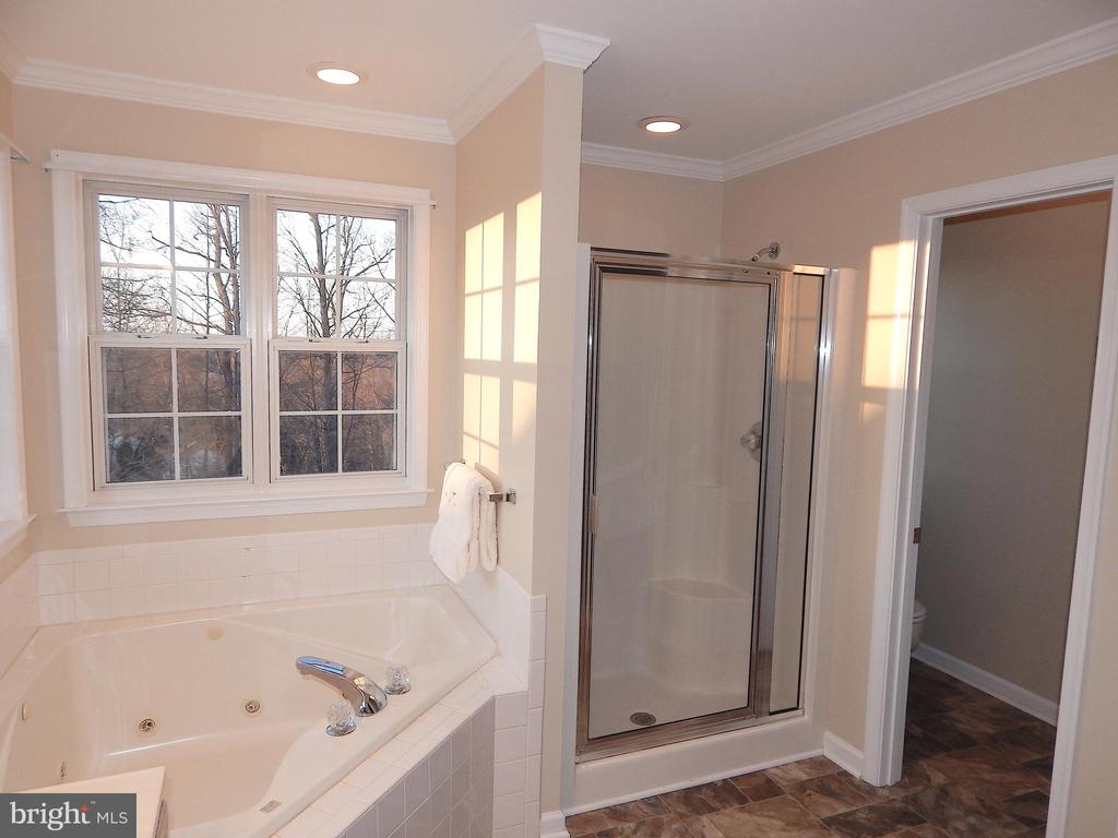 Tub, separate shower, door to private water closet - 81 BRUSH EVERARD CT, STAFFORD