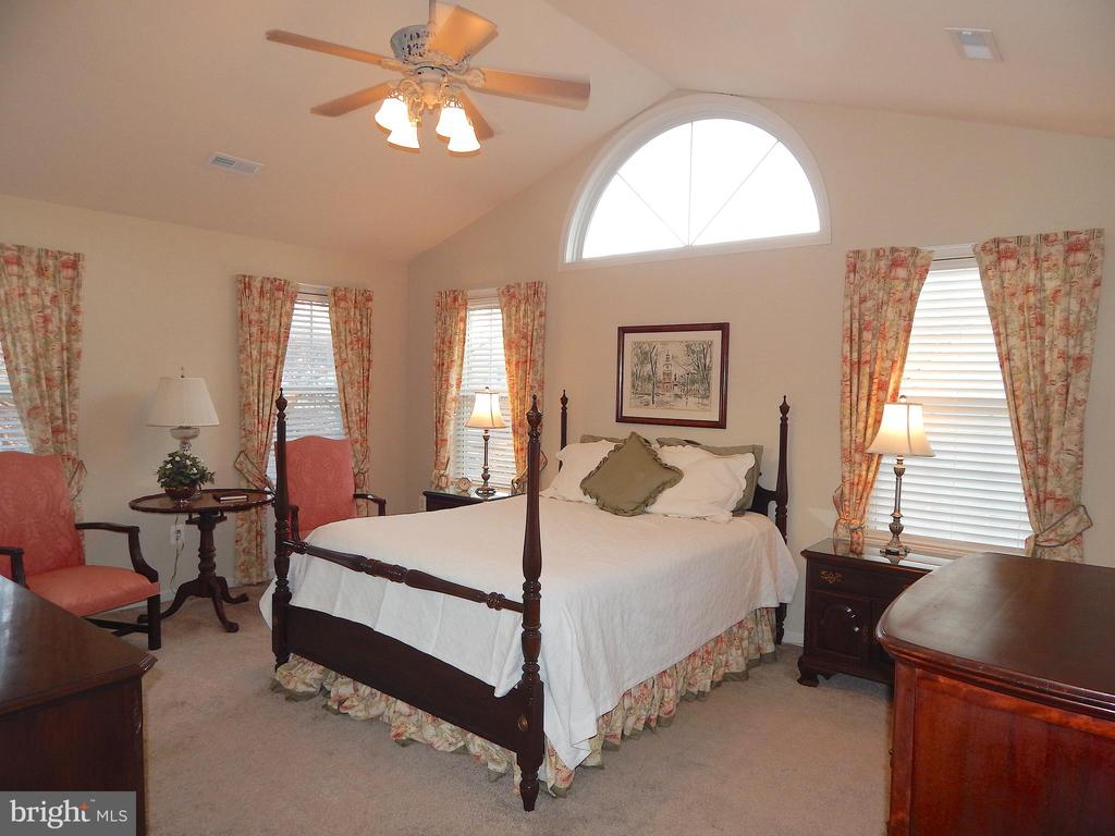 Large owner's suite w/cathedral ceiling - 81 BRUSH EVERARD CT, STAFFORD