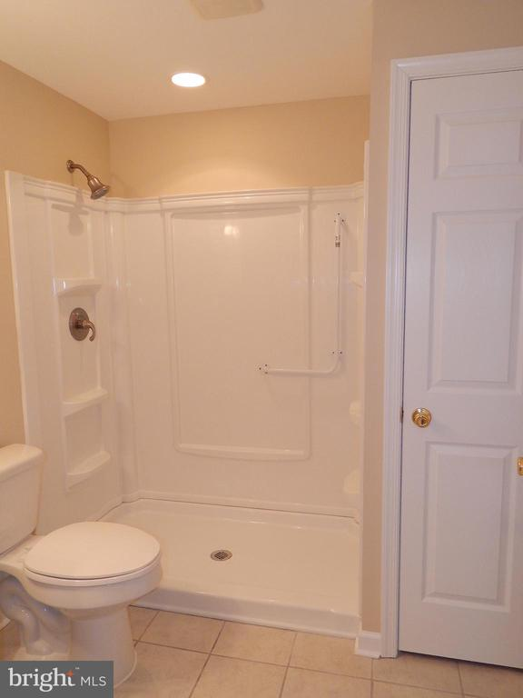 Basement full bath, walk-in shower, linen closet - 81 BRUSH EVERARD CT, STAFFORD