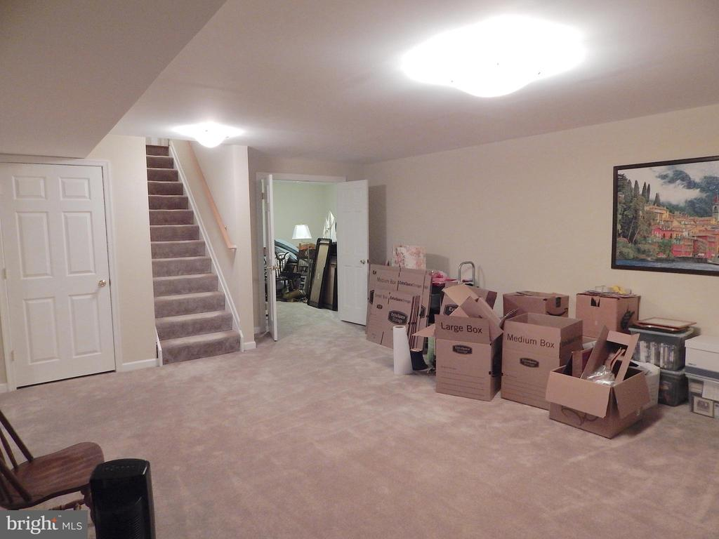 Basement bonus/rec rm showing steps to main level - 81 BRUSH EVERARD CT, STAFFORD