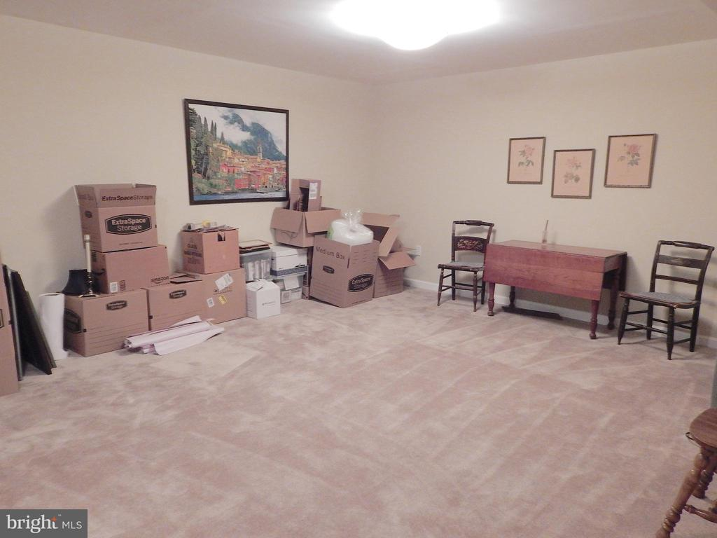 We're packing to move! View 2 of bonus/rec room - 81 BRUSH EVERARD CT, STAFFORD
