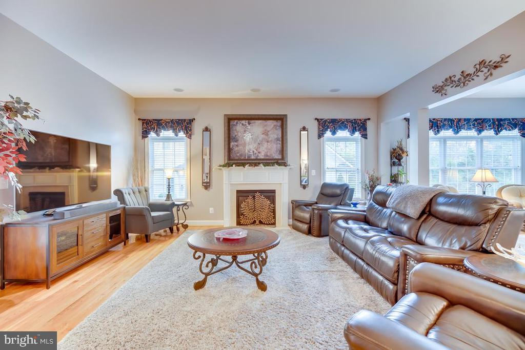 Family Room with Gas Fire place - 22418 DINAH PL, LEESBURG