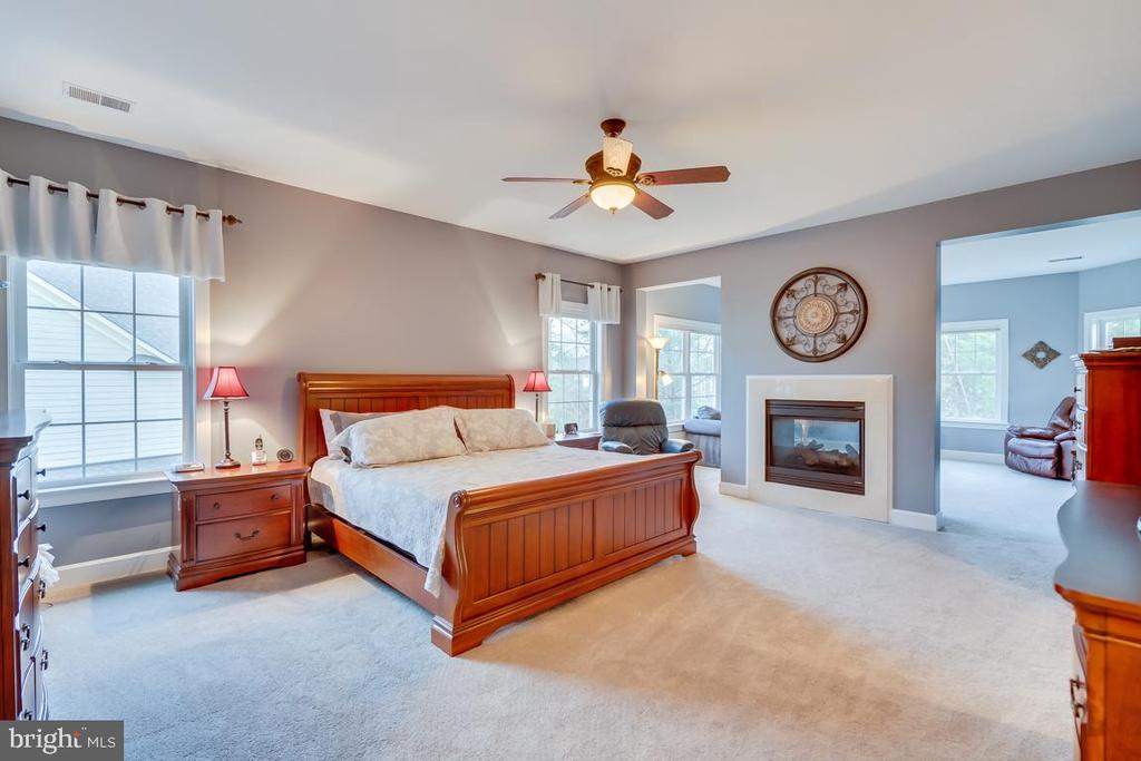 Master Bedroom with Gas Fireplace - 22418 DINAH PL, LEESBURG