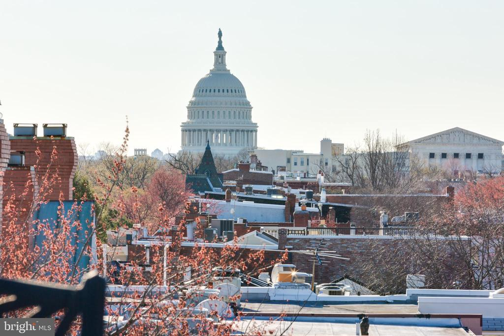 Spectacular views from rooftop terrace - 902 E CAPITOL ST NE, WASHINGTON