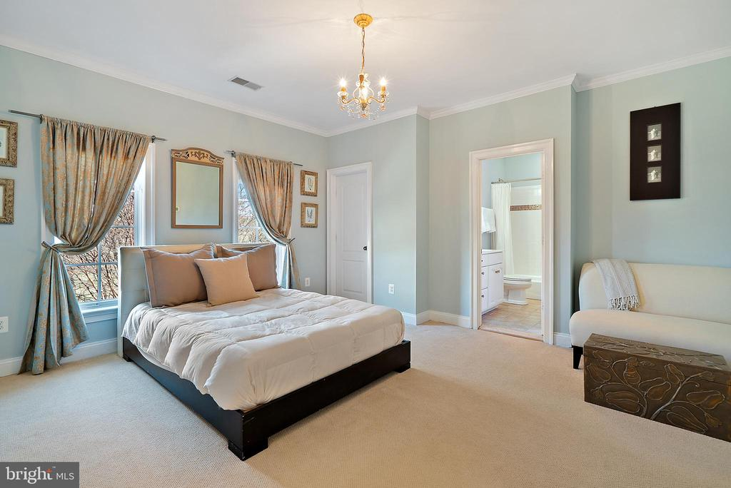 Spacious 2nd Bedroom with en suite bath - 21051 ST LOUIS RD, MIDDLEBURG
