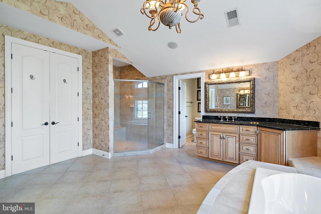 Over sized shower completes the deluxe Master Bath - 21051 ST LOUIS RD, MIDDLEBURG