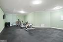 Exercise Room with rubber flooring - 21051 ST LOUIS RD, MIDDLEBURG