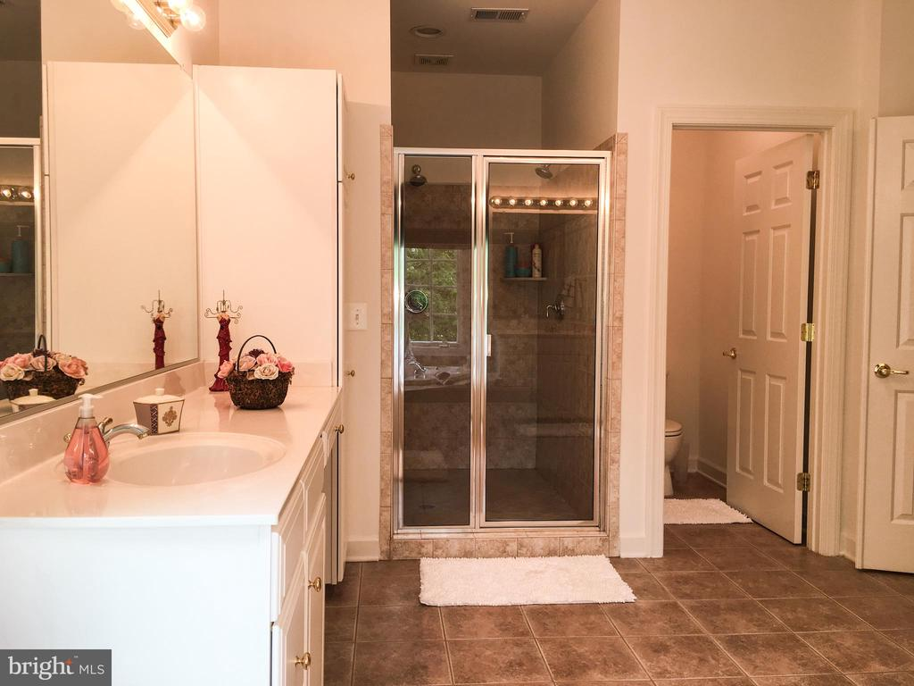 Master bath has separate shower and toilet - 2374 JAWED PL, DUNN LORING