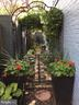 Beautifully maintained side alley - 221 N ST ASAPH ST, ALEXANDRIA