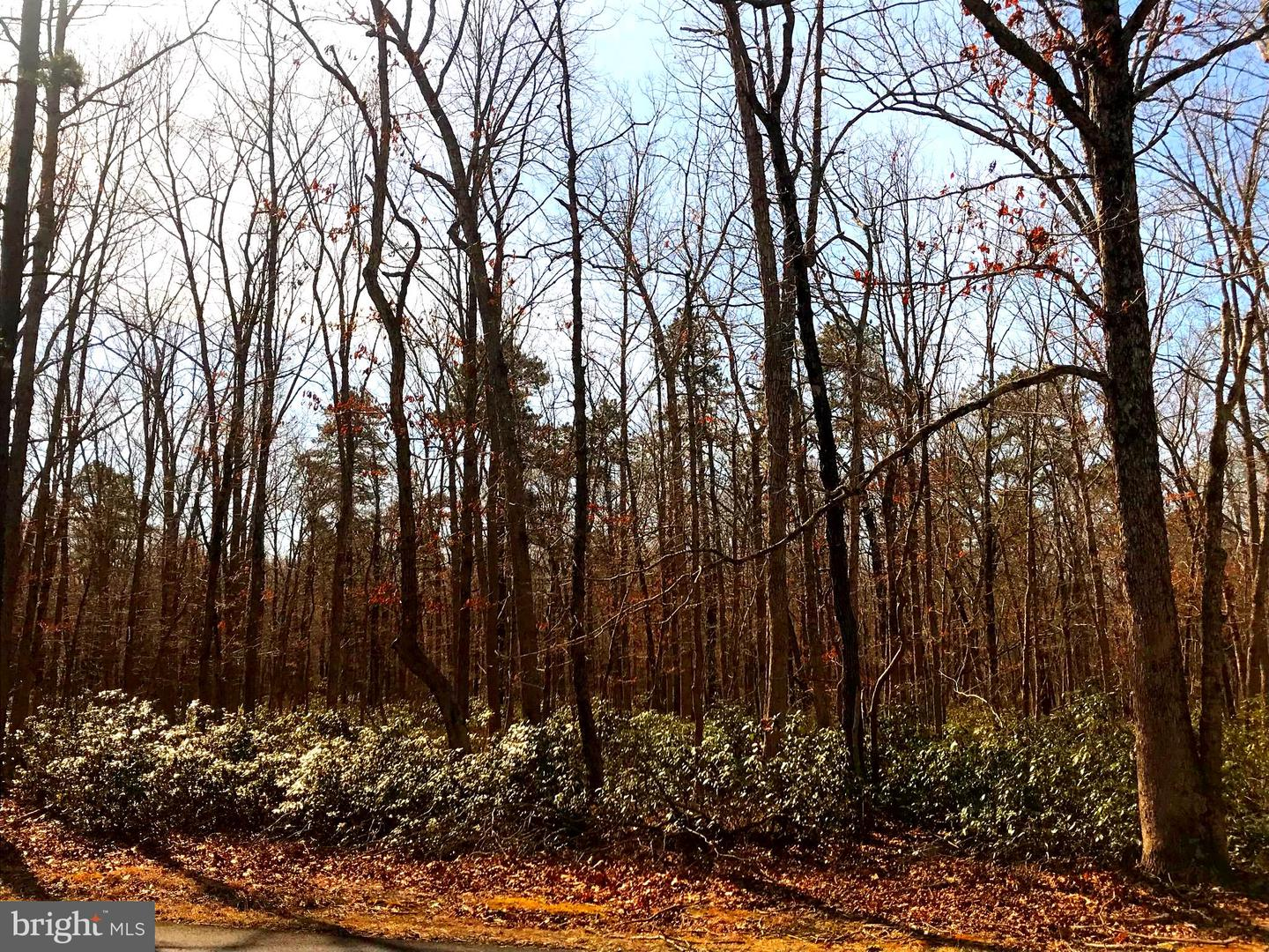 Land for Sale at Chatsworth, New Jersey 08019 United States