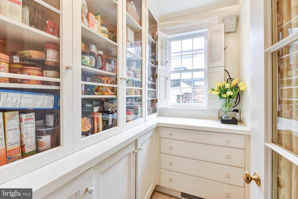 Second pantry provides ample storage - 217 S FAIRFAX ST, ALEXANDRIA