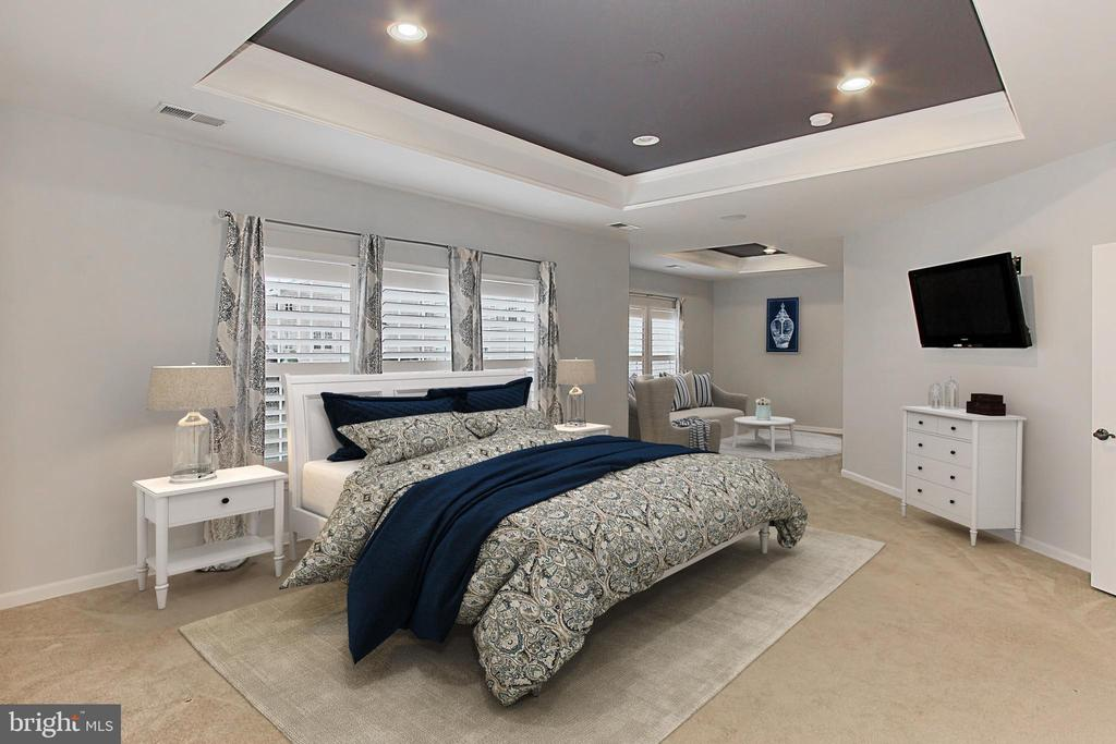Master Bedroom - 21492 GREAT SKY PL, BROADLANDS