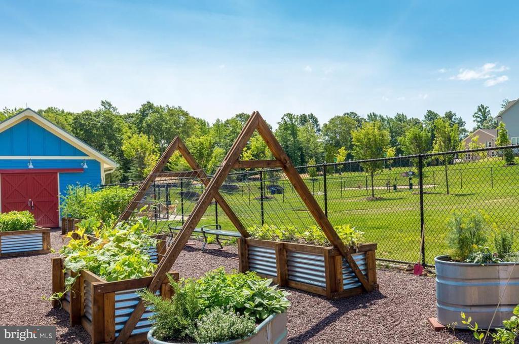 Community Garden - 861 BASSWOOD DR, STAFFORD