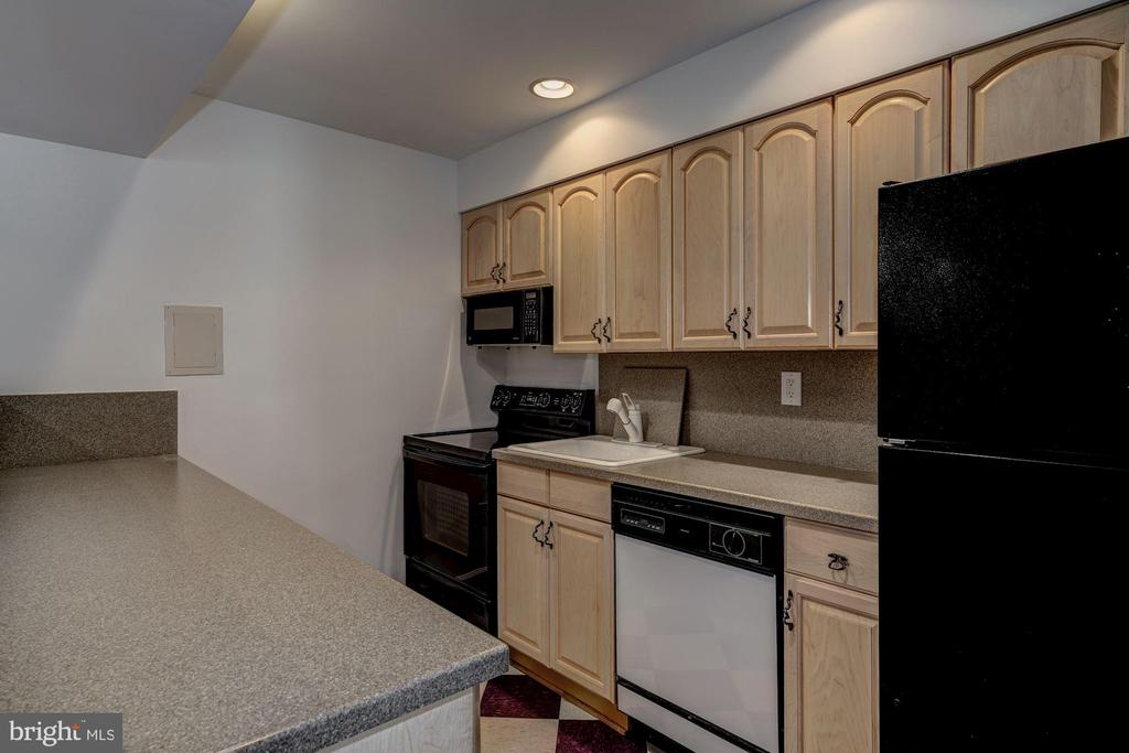 2nd kitchen - 12 CLIMBING ROSE CT, ROCKVILLE