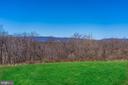 Views of the Blue Ridge Mountains - 21051 ST LOUIS RD, MIDDLEBURG