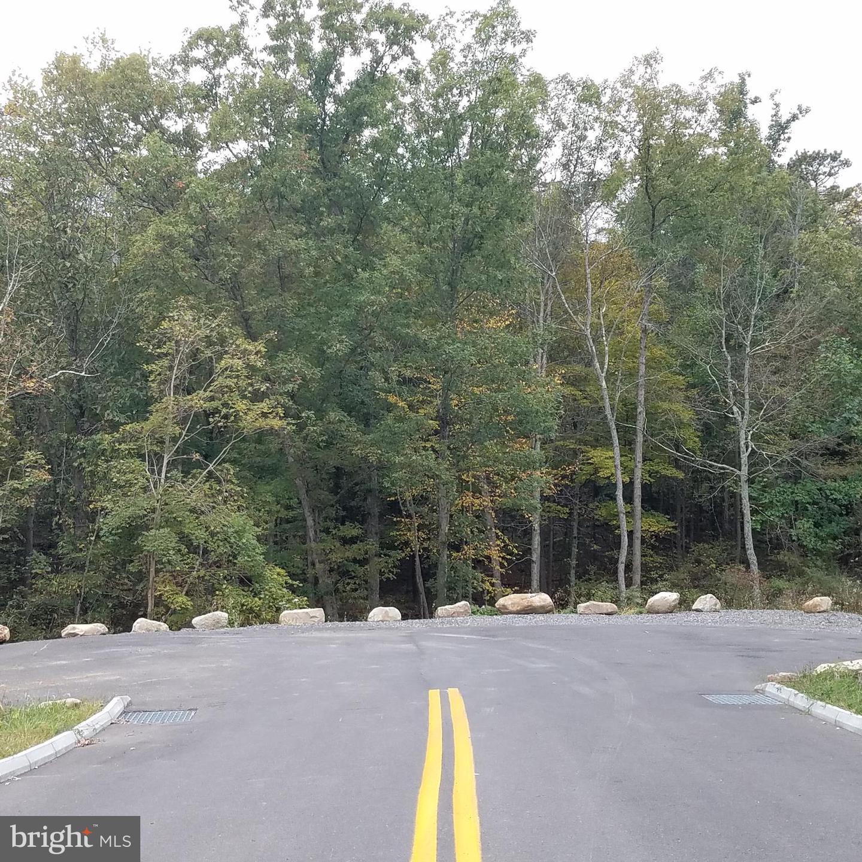 Land voor Verkoop op Ellerslie, Maryland 21529 Verenigde Staten